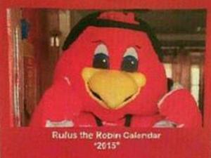 Rufus Robin